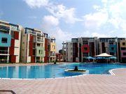 Квартиру на море продам в Болгарии.