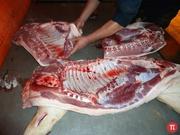 Мясо свинины 1-ой категории