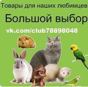 Зоотовары для домашних животных