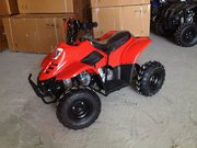Продам Новые в упаковке Детские Квадроциклы Grizzly 110cc 4t,  2016 год